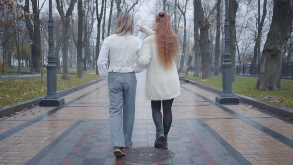 Thumbnail for Back View of Young Caucasian Couple Walking Along the Alley in Autumn City Park