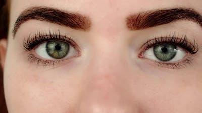 Young Woman Grey Eyes Macro