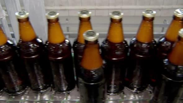 Transporting Conveyor Belt with Filled Bottles, Close-up View, Modern Equipment in Bottling Workshop