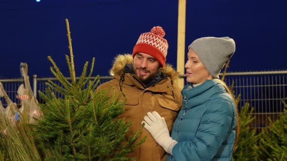 Thumbnail for Happy Couple Buying Christmas Tree at Market