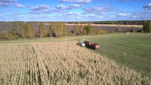 Aerial View Corn Harvester and Truck Drive To Field