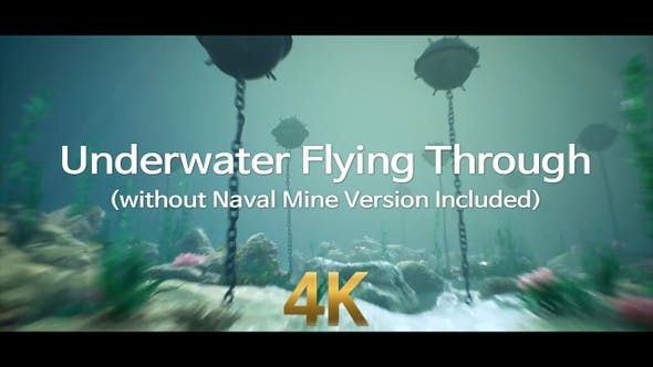 Thumbnail for Underwater Flying Through