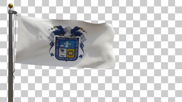 Aguascalientes Flag (Mexico) on Flagpole with Alpha Channel