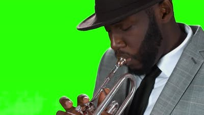 Trumpeter in a Hat.