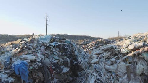 Dump of Household Waste. Environmental Disaster