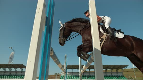 Thumbnail for Horse leaping over obstacle, Ultra Slow Motion