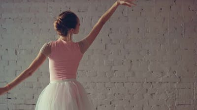 Ballet Movements of the Hands and Body