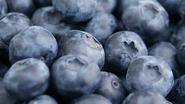 Thumbnail for Fresh blueberries, fruit background