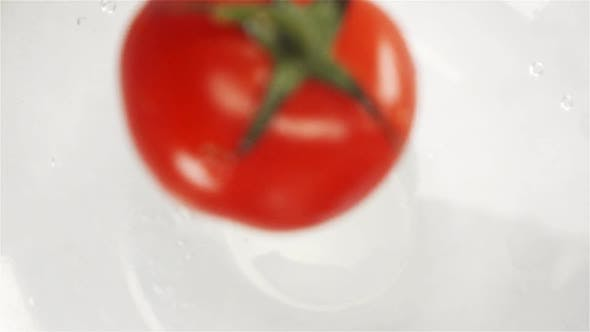 Thumbnail for One Red Tomato Falling Into Water with Splash