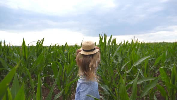 Thumbnail for Follow To Small Girl in Straw Hat Running Through Corn Field at Overcast Day. Little Kid in Dress