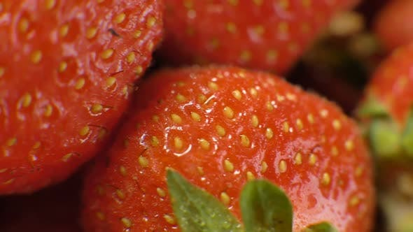 Thumbnail for Motion Along Delicious Fresh Ripe Strawberry Berries Closeup
