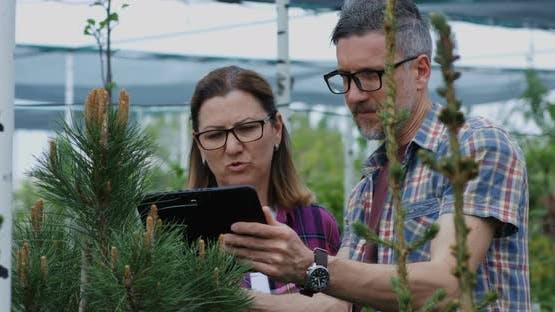 Two Gardeners Using Tablet in Nursery Garden