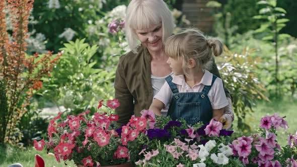 Thumbnail for Grandmother Teaching Granddaughter Gardening