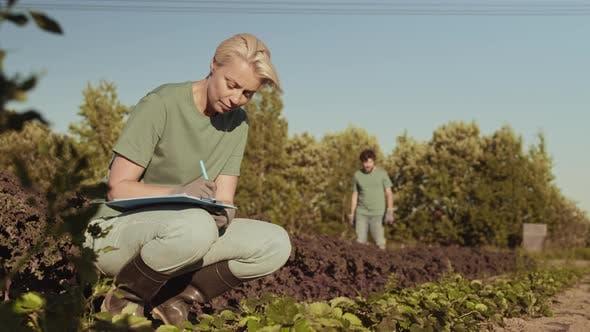 Thumbnail for Female Gardener Writing in Document in the Garden