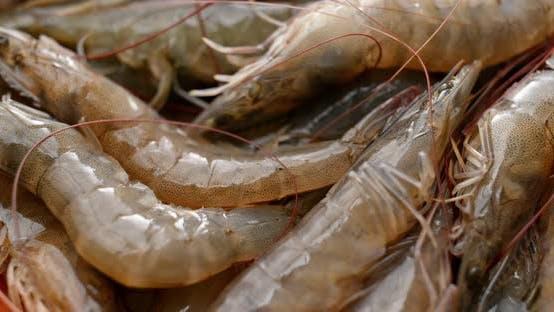 Thumbnail for Fresh raw shrimp