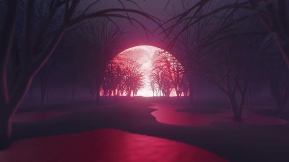 Blut Mond Nacht Im Dunkeln Wald 4K