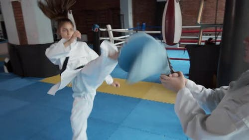 Martial Arts Fighter Exercising
