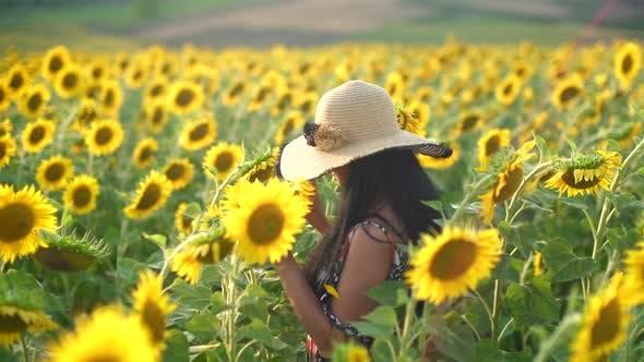 Thumbnail for Brunette Girl With Black Hair in a Sunflower Field