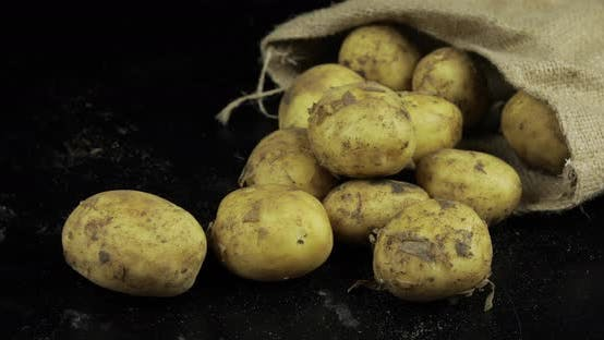 Thumbnail for Potatoes on Black Surfase in a Canvas Bag. Fresh Dirty Raw Potato in a Pile