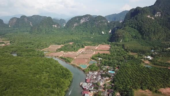 Thumbnail for River in Mangrove Forest and Mountains