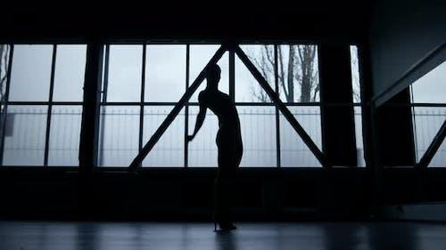 Woman Silhouette Doing Aerobics Indoors