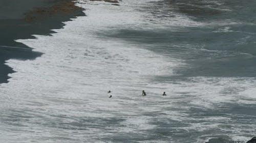 Big Surf - Small People