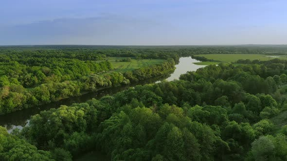 Thumbnail for Aerial View of a Beautiful River Landscape in a Green Forest at Sunset