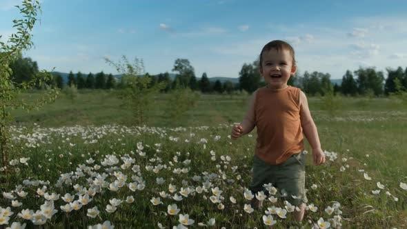 Thumbnail for Steadicam Shot of a Little Happy Boy Running Across a Flower Field