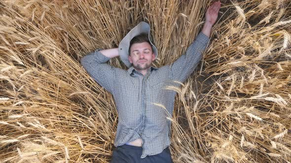 Thumbnail for Top View of Young Farmer Lying on Wheat Stems and Resting at Cereal Field. Happy Male Agronomist