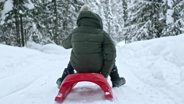 Thumbnail for Little Boy Riding Sled in Winter