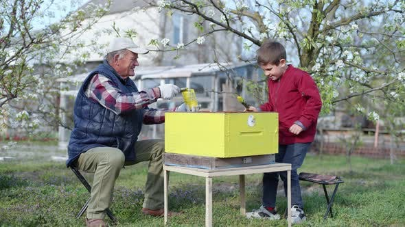 Elderly Male Beekeeper with Hardworking Grandson Paints a Wooden Beehive with Paint and Brushes To