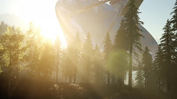 Cover Image for The Observatory Radio Telescope in Forest at Sunset