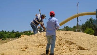 Hay Sprayer Adult Worker