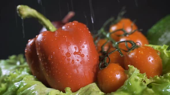 Splashes of Water Fall on the Tomatoes and Other Vegetables