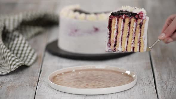 Thumbnail for Piece of Homemade Vertical Layer Blackcurrant Jam Cake.