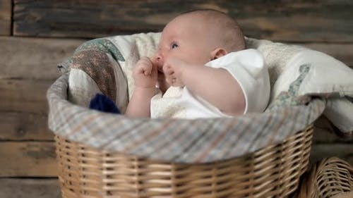 Basket with Baby.