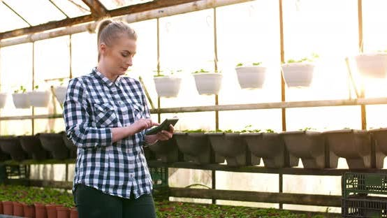 Thumbnail for Female Farmer Using Calculator in Greenhouse Selling Flowers