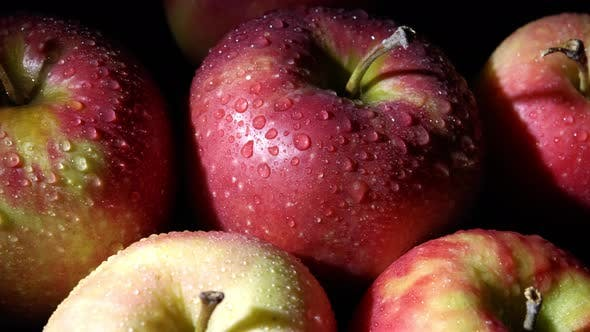 Thumbnail for Close-up of a Red-green Apple with Water Droplets Macro Shot. The Apple Rotates Around Its Axis on a
