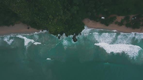 Thumbnail for Beach Wave