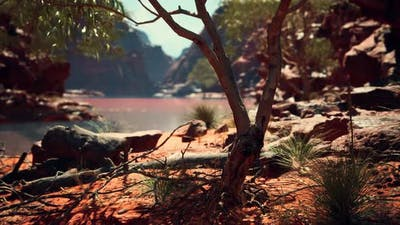 Trees Near Colorado River in Grand Canyon