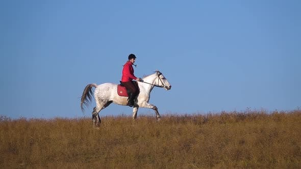 Thumbnail for Girl Gallops on a Horse. Slow Motion
