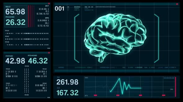 Futuristic Digital Screen HUD Brain Data, Medical Background