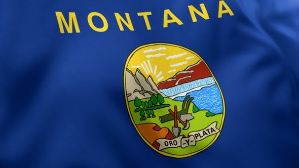 Thumbnail for Montana State Flag
