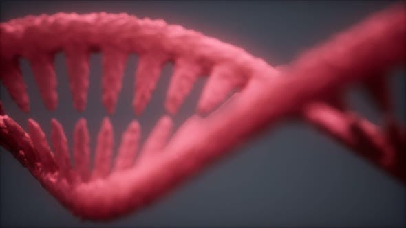 Thumbnail for DNA Molecule on the Grey Background