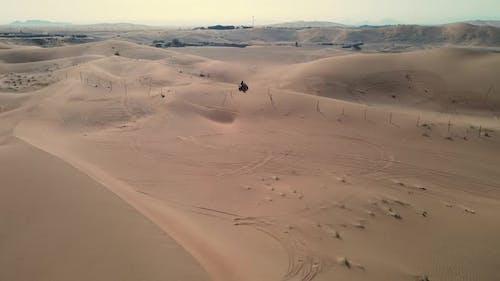 Quad Bike Rides the Dunes