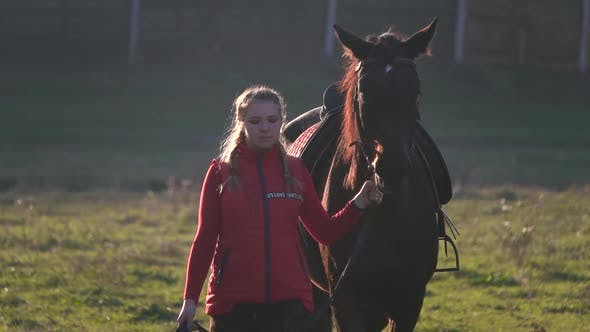 Horsewoman Walks Through the Meadow with a Brown Stallion