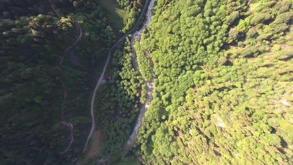 Thumbnail for River and Dirt Mountain Road of Valley in Forest