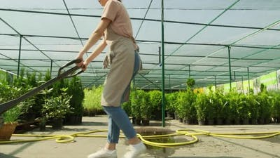 Gardener Carrying Pot Plants In Cargo Cart