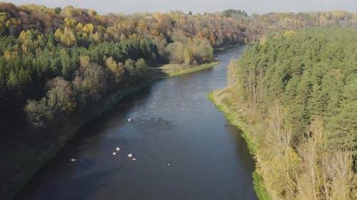 River Flow in Autumn Fall Season