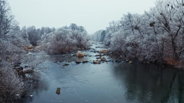 Thumbnail for River Among Trees in Winter